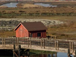 Boat_house_on_don_edwards_San_Francisco_bay_national_wildlife_refuge
